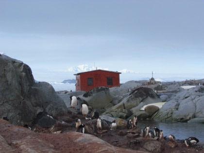 Petermann Island#}
