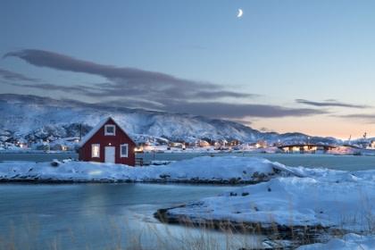 Norte de Noruega, Aurora Boreal y Ballenas