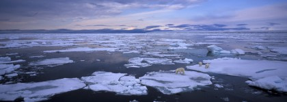 Nordaustlandet Ice Cap#}