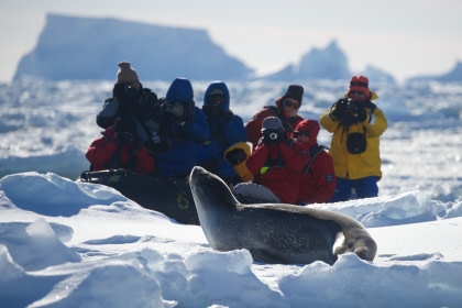 Ross Sea | incl. Helikopters - Antarctic Peninsula - Zuidpoolcirkel - Peter I Island - Ross Sea - Macquarie Island - Campbell Island