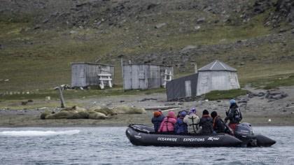 Este de Spitsbergen, focas y osos polares en el hielo marino