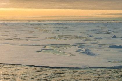 Noord Spitsbergen, De Arctische zomer