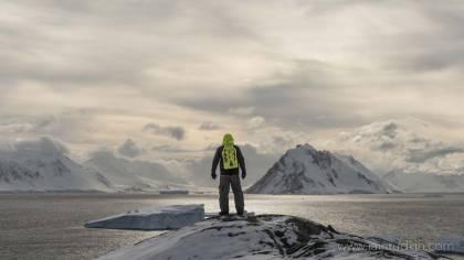 2019 Highlights: 41 Photos from a Prime Polar Year