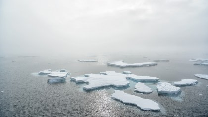 Arctic Ocean Expedition, Bremerhaven - Fair Isle - Jan Mayen - Ice edge - Spitsbergen