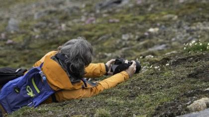 Noord-Spitsbergen Science Basecamp met gratis wetenschappelijke activiteiten, Op zoek naar ijsberen en pakijs