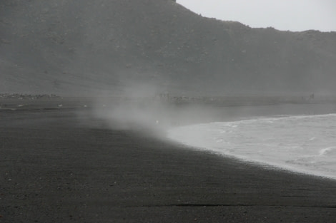 A typical beach on Whalers Bay
