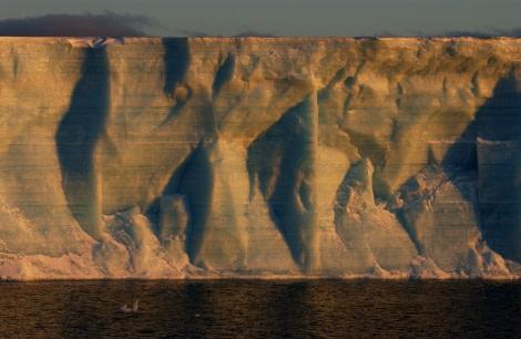 Tabular Iceberg at South Orkneys