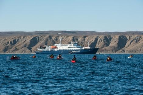 Greenland coastline kayaking