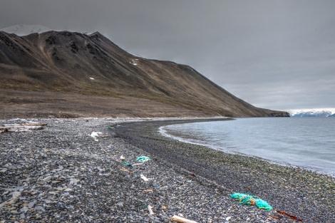 cleanup BEFORE © Alex Chavanne - Oceanwide Expeditions.jpg