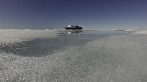 Ortelius in pack ice, Spitsbergen, July