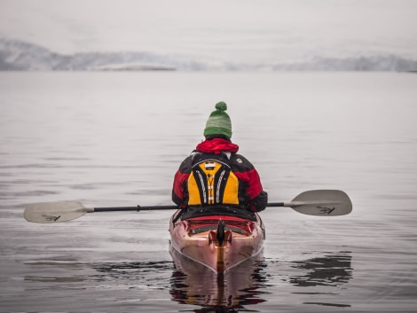 Antarctica, Kayaking © Dietmar Denger-Oceanwide Expeditions