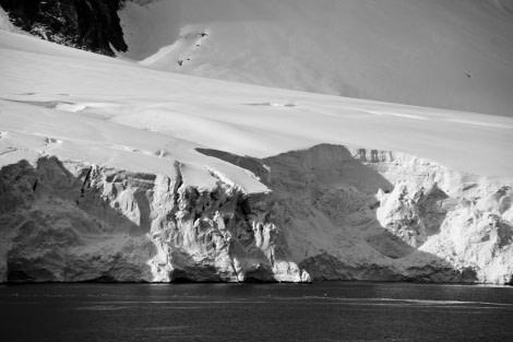 Gerlache Strait, Antarctica, March © Richard Wadey-Oceanwide Expeditions (2).jpg