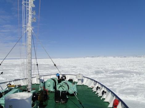 Pack ice, Snow Hill Island Ice edge, Weddell Sea, Antarctica, November © Hans Murre-Oceanwide Expeditions.JPG