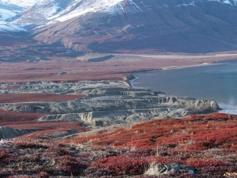 Northeast Greenland, Rypefjord rocks, September © Victoria Salem-Oceanwide Expeditions.jpg
