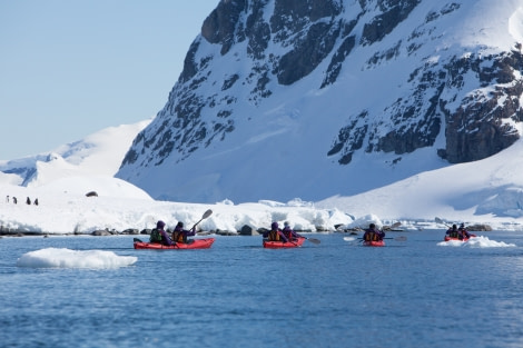 Kayaking in the Errera Channel, Antarctica © Troels Jacobsen-Oceanwide Expeditions.JPG