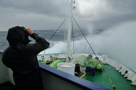 OTL23A-17,OTL23 log Day 2c Bruce Robinson_© Oceanwide Expeditions.jpg