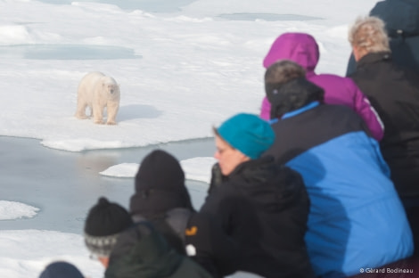 PLA13-18 Day05-02_ArcticOcean_WatchingPolarBear_GerardBodineau-Oceanwide Expeditions.jpg