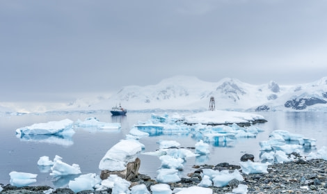 Ortelius, Antarctica, Nov© Ilja Reijnen-Oceanwide Expeditions (65).jpg