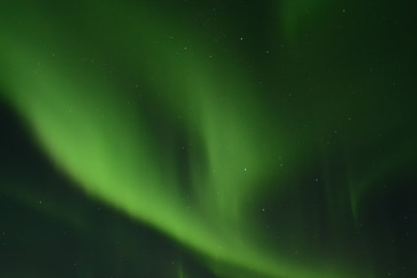 North Norway, Aurora Borealis © Florian Piper - Oceanwide Expeditions.jpg