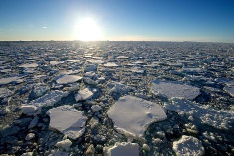 Ross Sea, Antarctica © Michael Martin-Oceanwide Expeditions (4).jpg