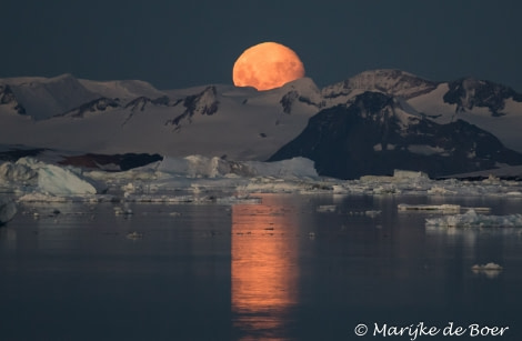 PLA30-19, DAY 8-18 MAR Moon_rising - Oceanwide Expeditions.jpg