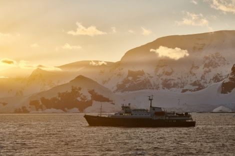 Antarctica, Plancius; Lemaire © Mike Louagie-Oceanwide Expeditions.jpg