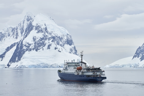 Antarctica, Plancius, Lemaire © Mike Louagie-Oceanwide Expeditions (3).jpg