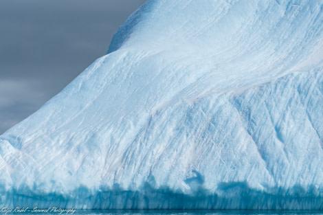 PLA24-19 Day 12 20191211_Katja Riedel_P2350011 - Oceanwide Expeditions.jpg