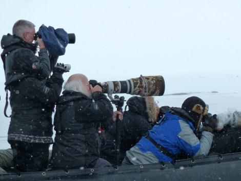 north spitsbergen_summer solstice © jan michiels-oceanwide expeditions (23).jpg