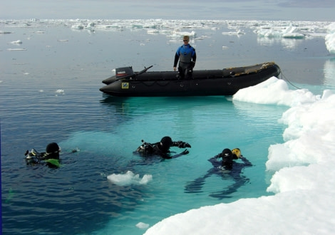 Divers in Svalbard © Francois de Riberolles - Oceanwide Expeditions.jpg