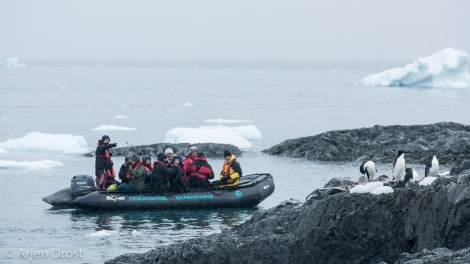 Zodiac cruise, Kinnes Cove © Arjen Drost, Natureview - Oceanwide Expeditions.jpg