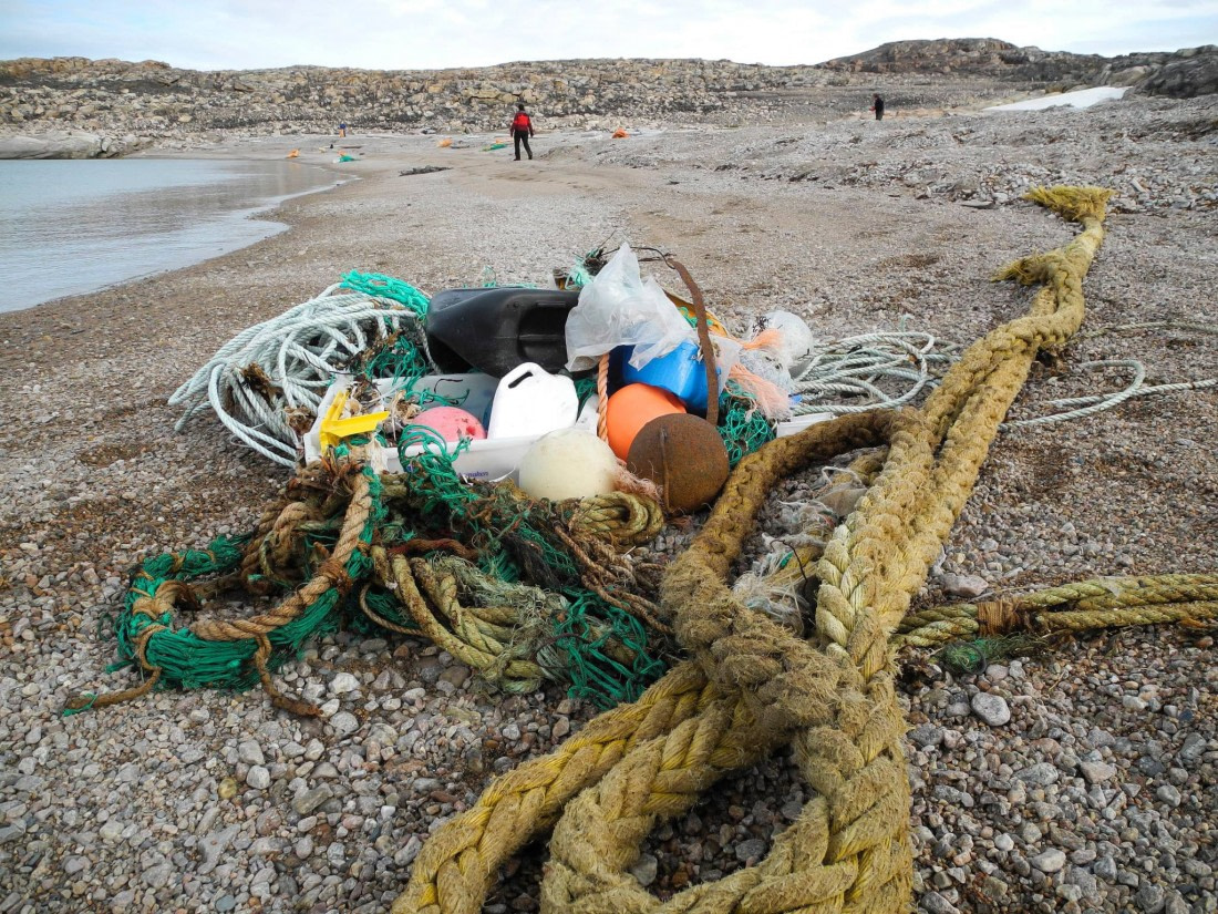 Cleaning the shores of Spitsbergen