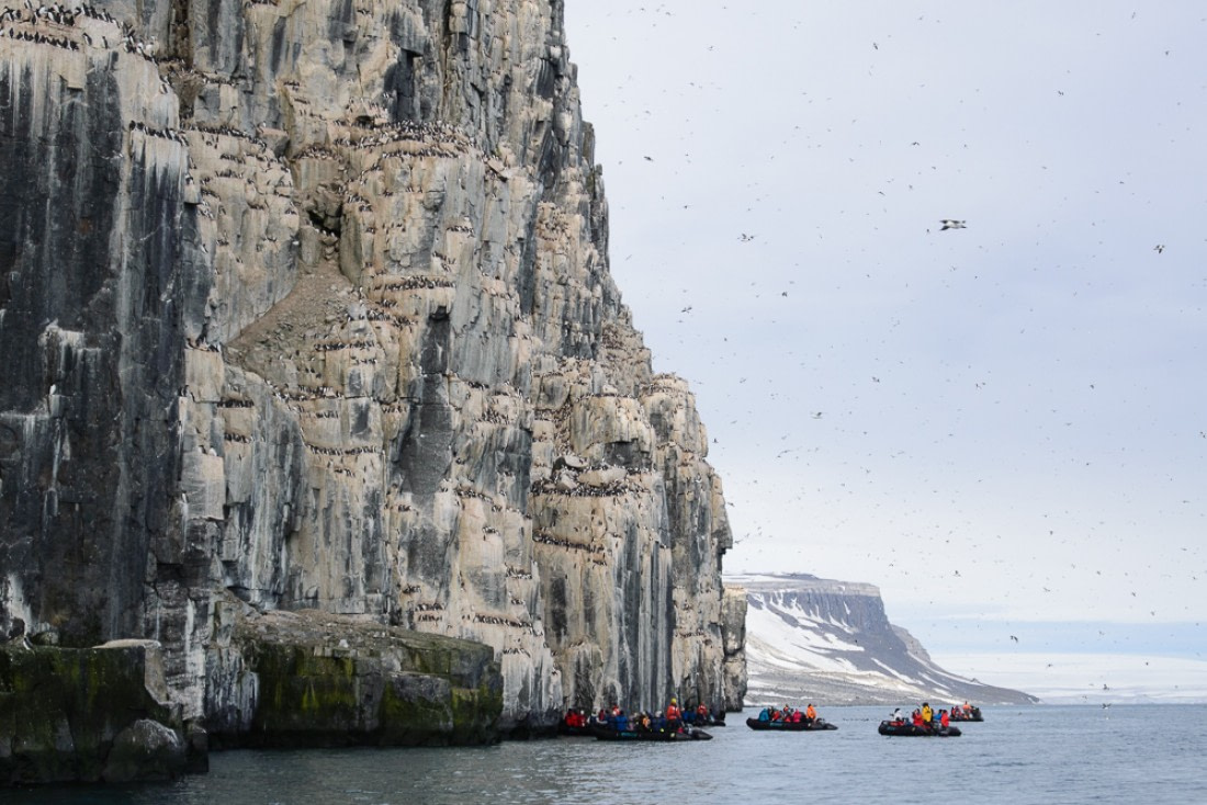 Zodiacs with passengers at the Alkefjellet bird cliffs
