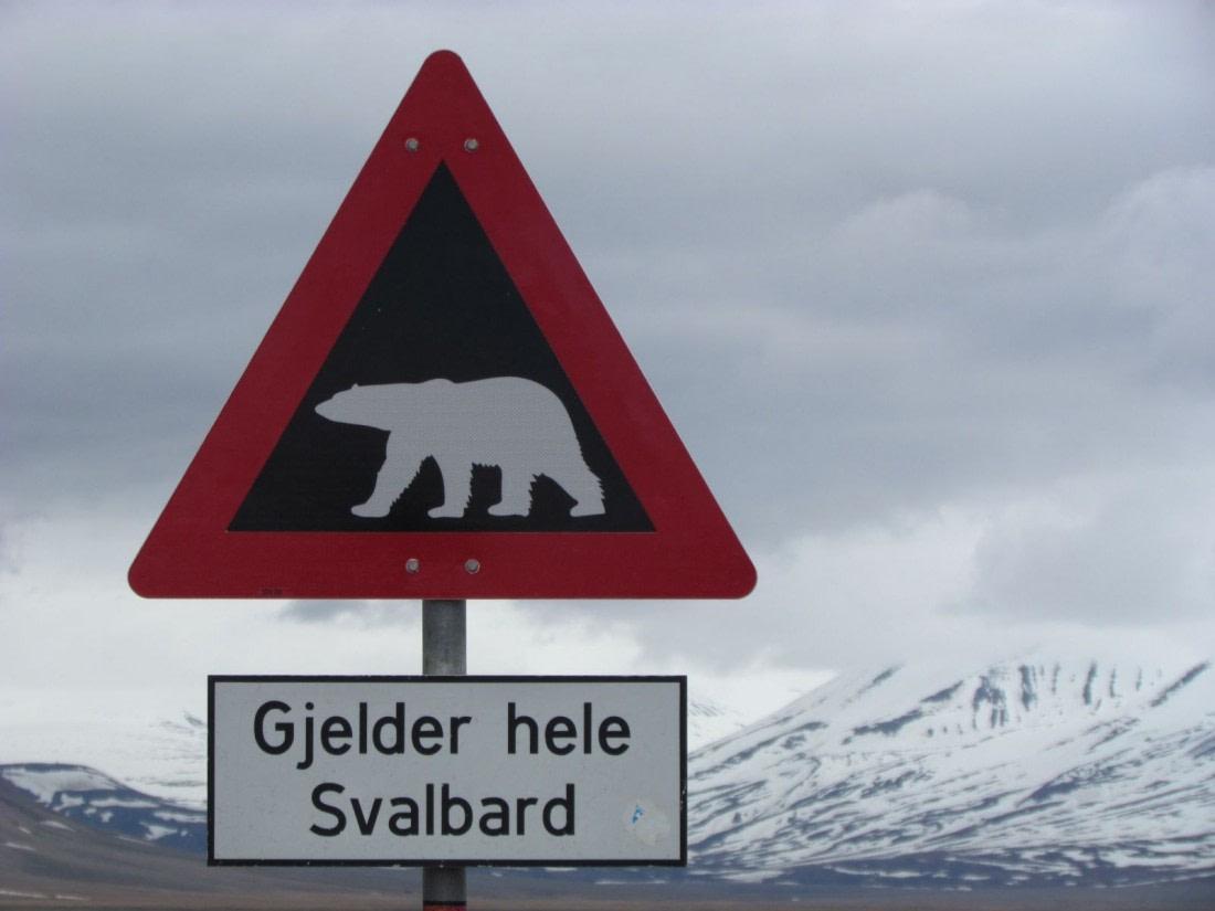Road sign with a polar bear warning on it in Longyearbyen