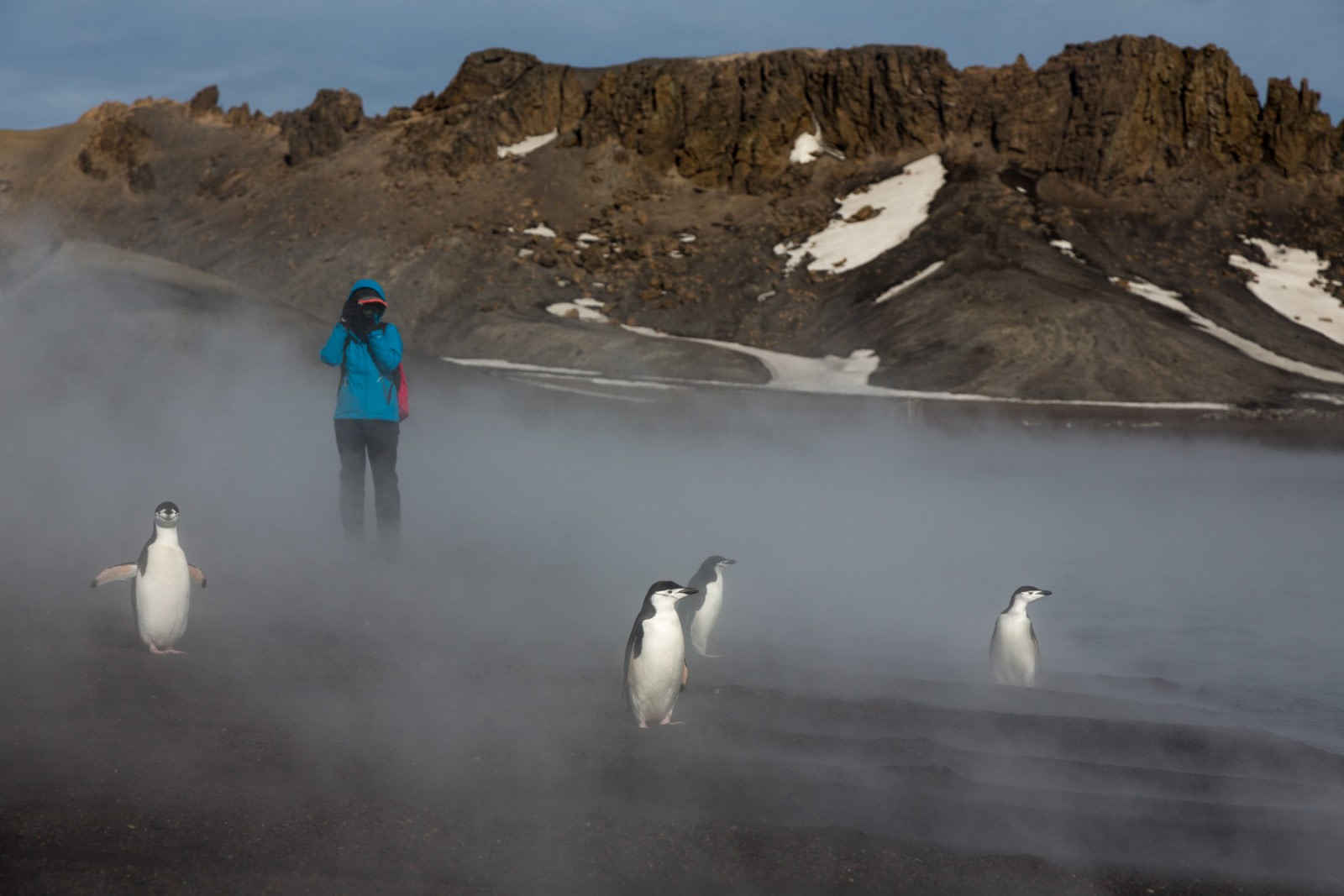 The A To Z Guide To Cruising The Antarctic