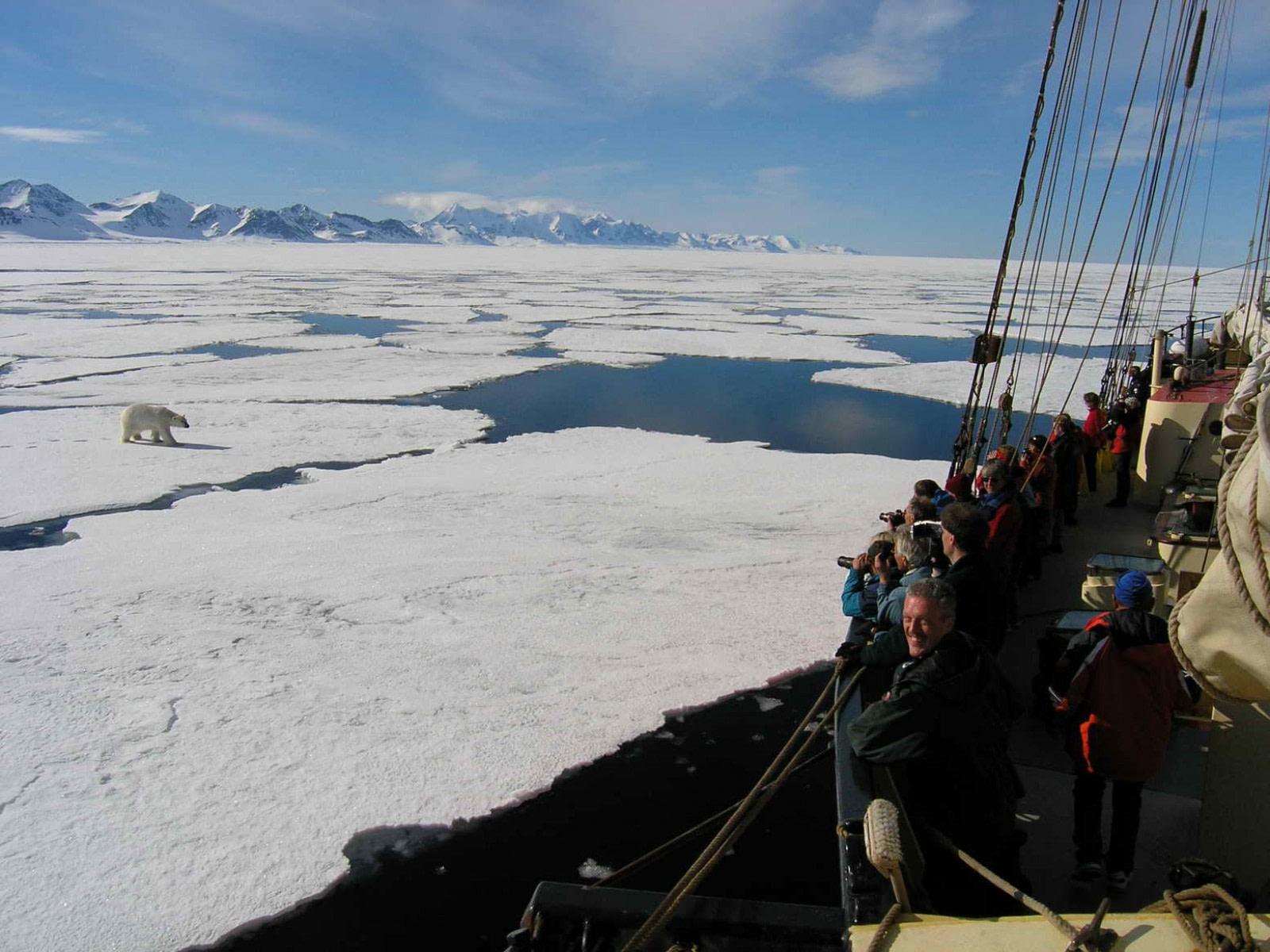 Polar Bear spotting  © Jan Belgers-Oceanwide Expeditions