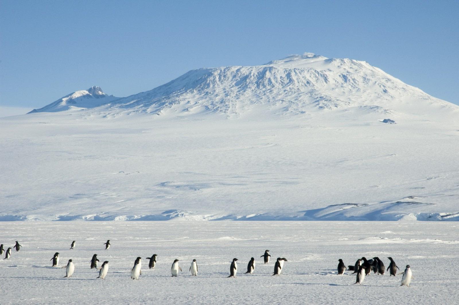 Mount Erebus, Ross Island, Ross Sea