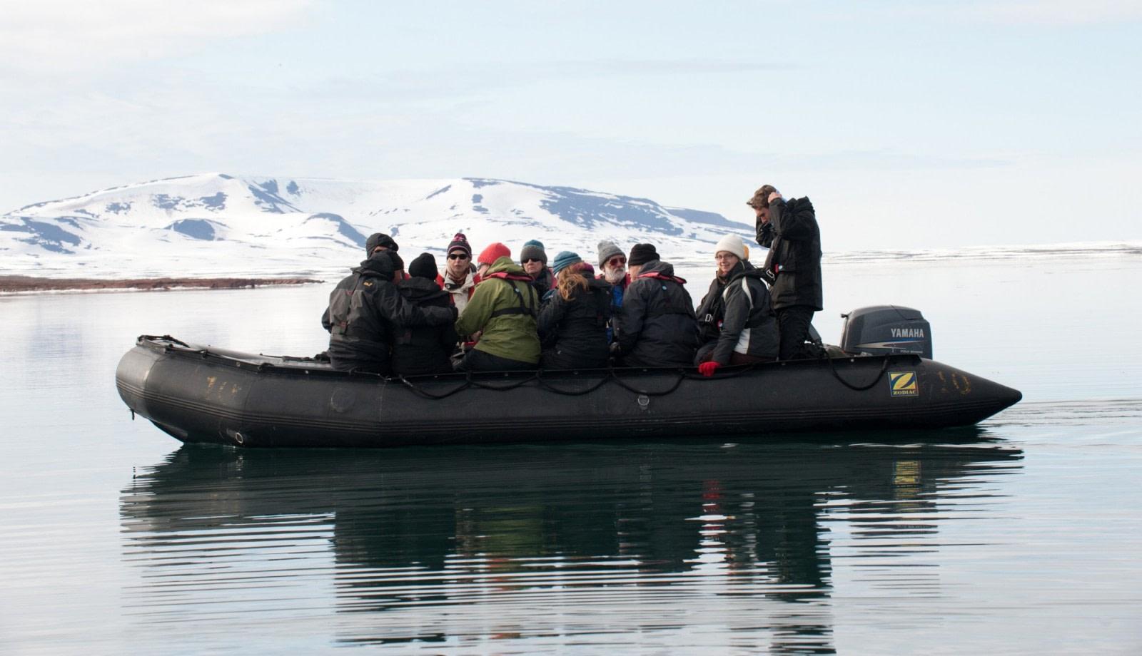 Whale spotting around Spitsbergen