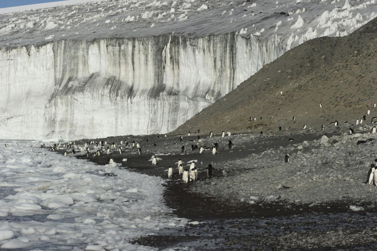 Cape Adare
