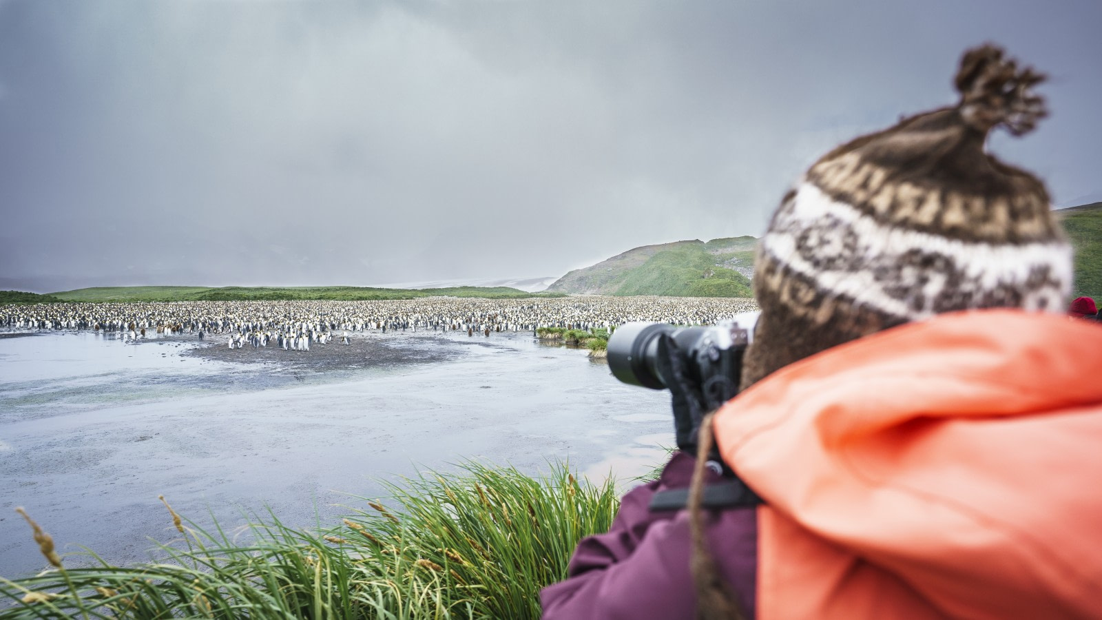 Falklands, South Georgia, Ant Peninsula © Fotografie Dietmar Denger-Oceanwide Expeditions80.jpg