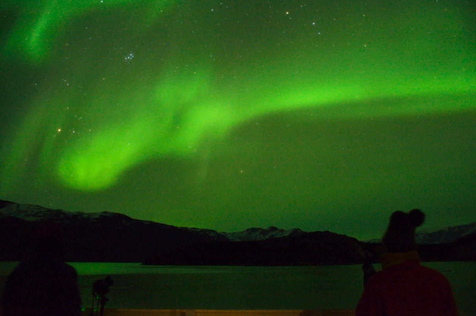 Aurora Borealis across Rypefjord, Scoresby Sund © Tobias Brehm (19).jpg