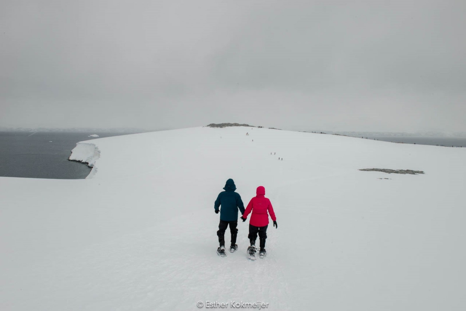 PLA25-17, 2018-01-03 Damoy Point - snowshoeing - Esther Kokmeijer-09_© Oceanwide Expeditions.jpg