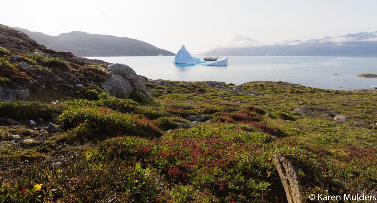 ©KM2019 NE Greenland Scoresby Sund Milneland.jpg