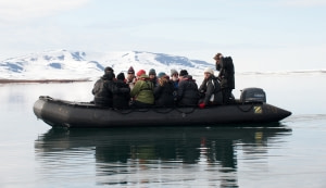 Whale spotting around Spitsbergen