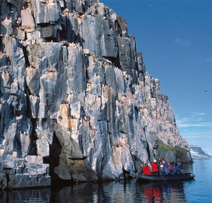 Birds of Spitsbergen