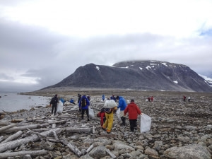 Cleaning the shores