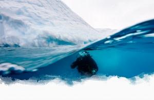 Polartauchen