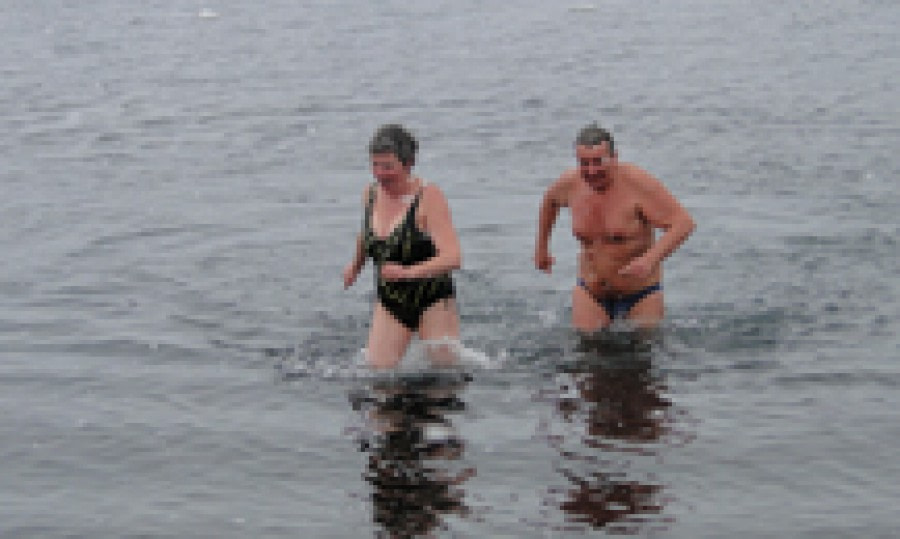 Take a plunge in Antarctic waters