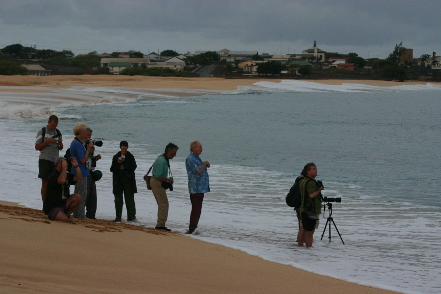 Seening egg laying turtles on Ascension Island