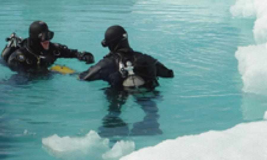 Polar diving